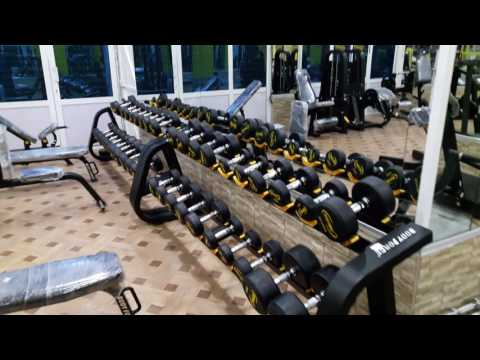 TRICEPS exercices   guide de musculation